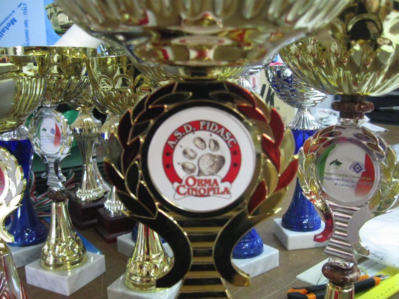 Premiazioni